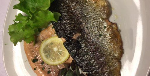 filetti di trota salmonata alla trentina